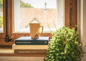 windowsill with books and a teacup